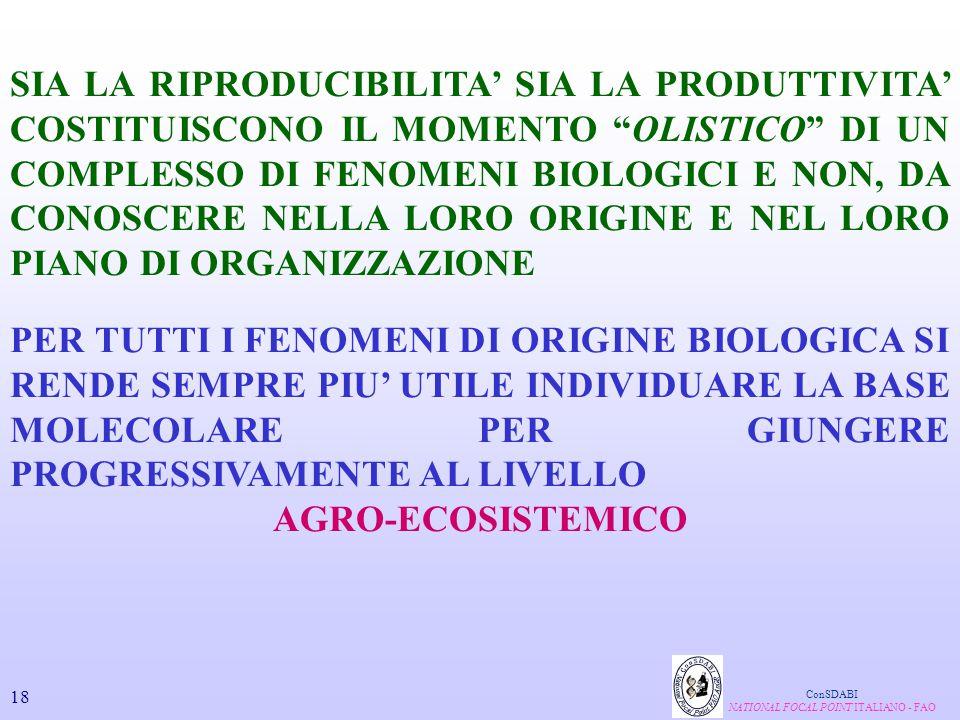 NATIONAL FOCAL POINT ITALIANO - FAO