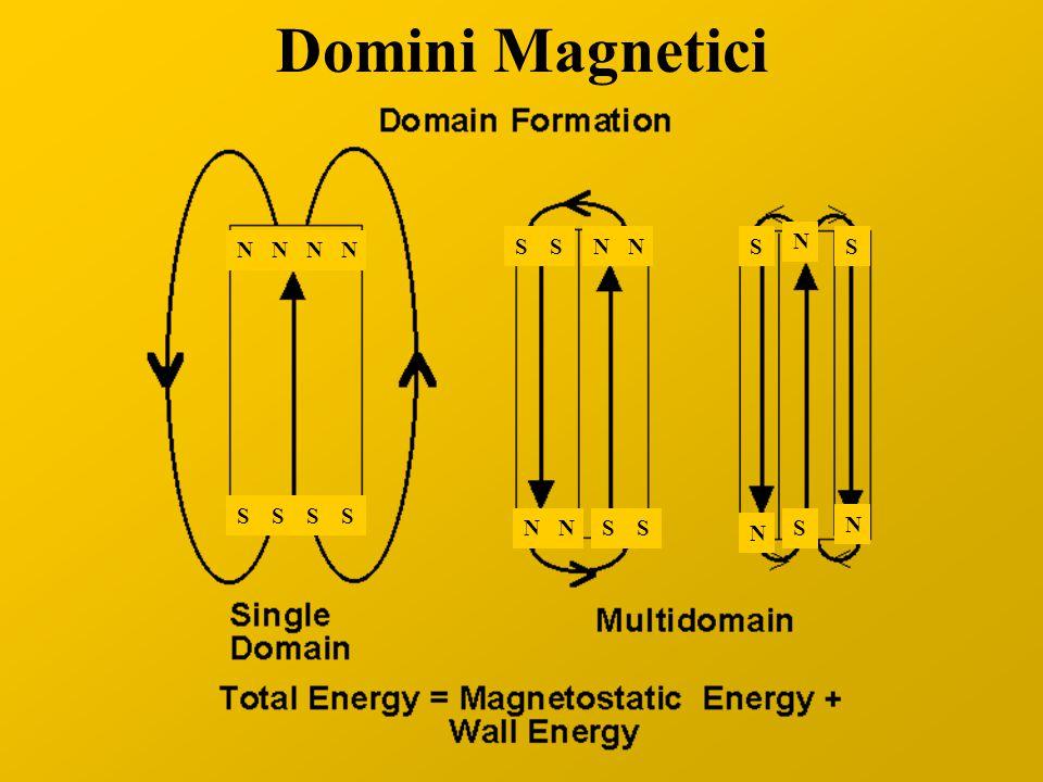 Domini Magnetici N N S N S S S N S N N S