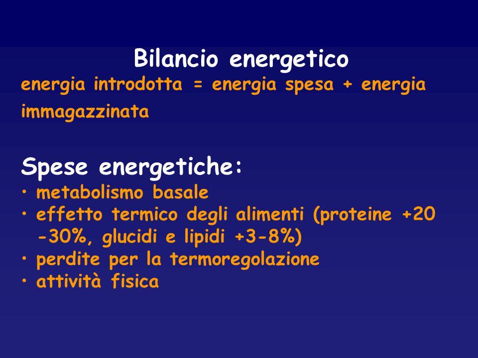 Bilancio energetico Spese energetiche: