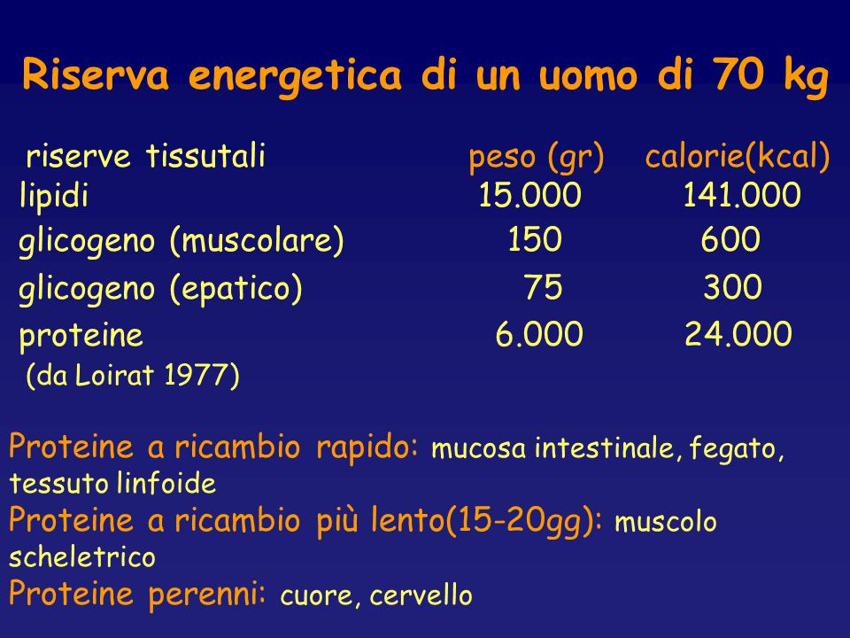 Riserva energetica di un uomo di 70 kg