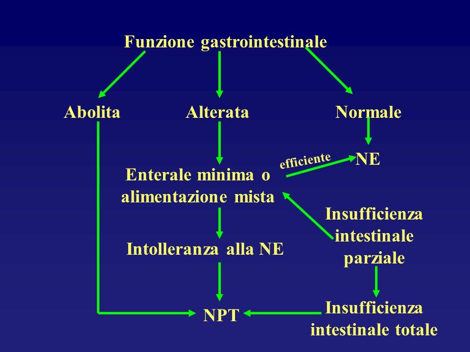 Funzione gastrointestinale