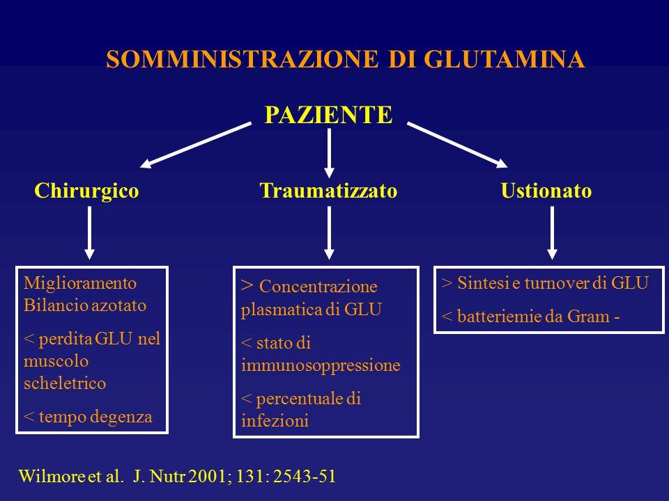 SOMMINISTRAZIONE DI GLUTAMINA
