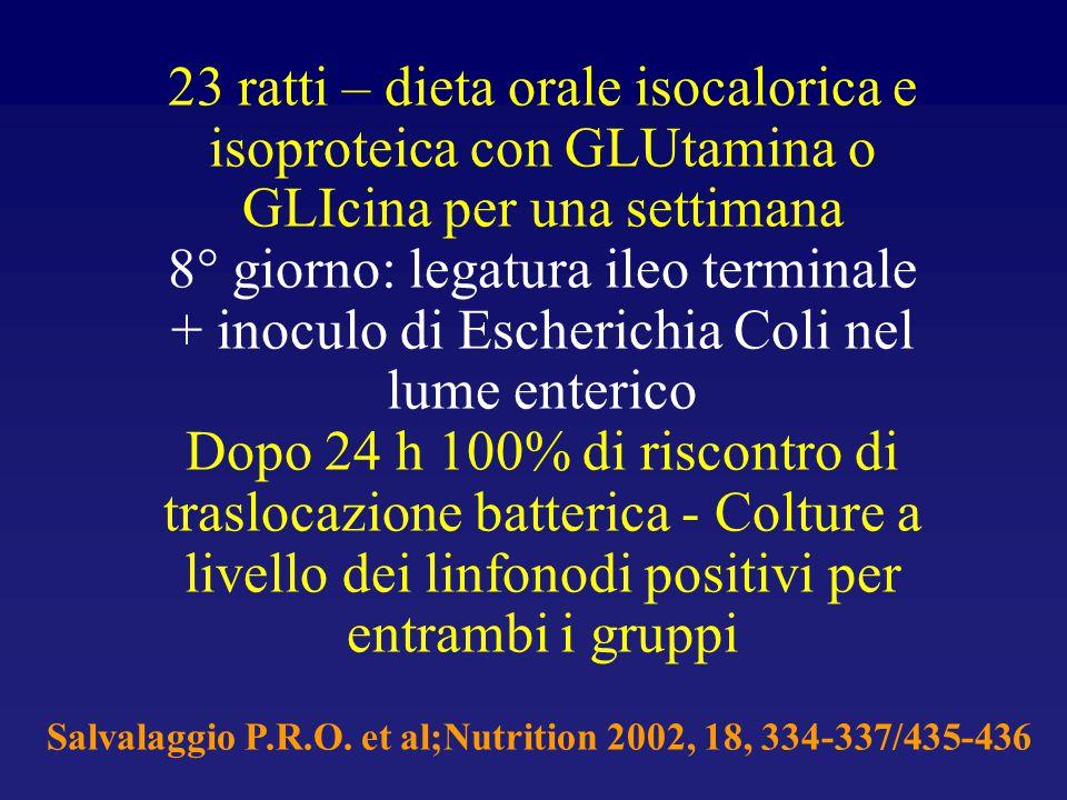 23 ratti – dieta orale isocalorica e isoproteica con GLUtamina o GLIcina per una settimana 8° giorno: legatura ileo terminale + inoculo di Escherichia Coli nel lume enterico Dopo 24 h 100% di riscontro di traslocazione batterica - Colture a livello dei linfonodi positivi per entrambi i gruppi