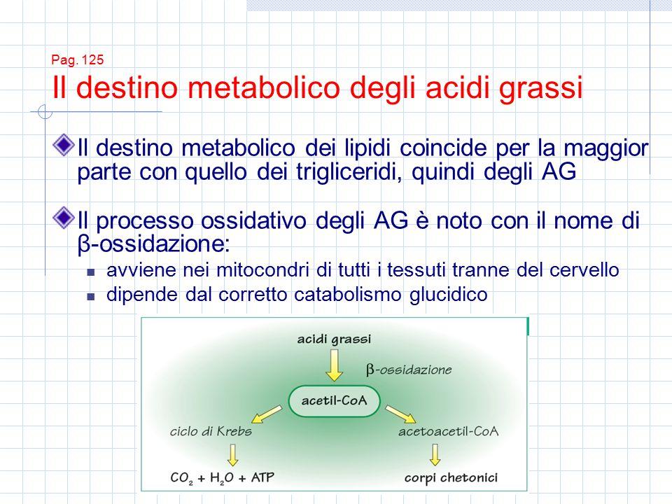 Pag. 125 Il destino metabolico degli acidi grassi