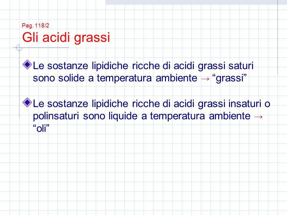 Pag. 118/2 Gli acidi grassi Le sostanze lipidiche ricche di acidi grassi saturi sono solide a temperatura ambiente → grassi