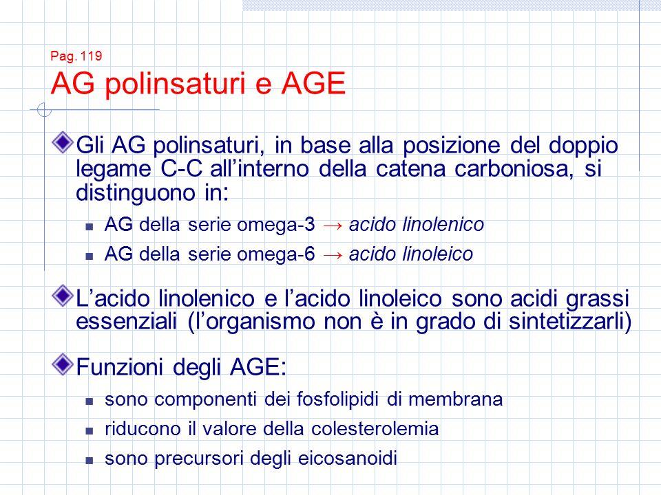 Pag. 119 AG polinsaturi e AGE