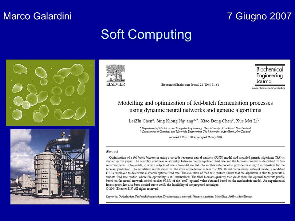 Marco Galardini 7 Giugno 2007 Soft Computing