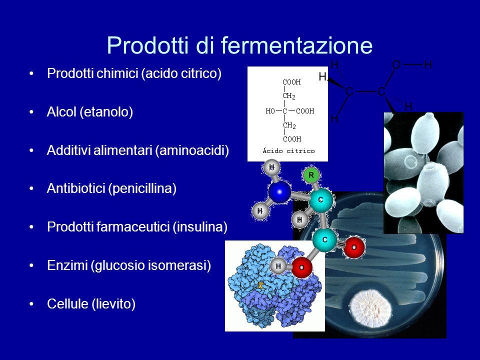 Prodotti di fermentazione