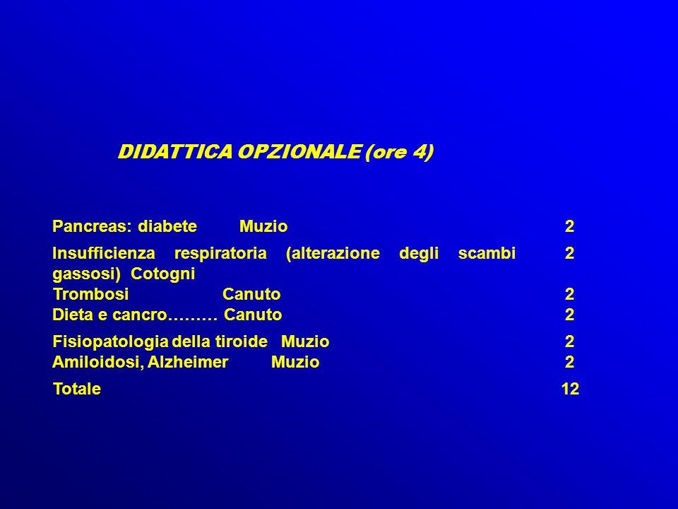 DIDATTICA OPZIONALE (ore 4)