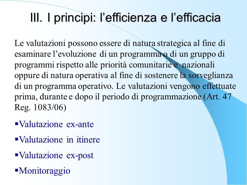 III. I principi: l'efficienza e l'efficacia