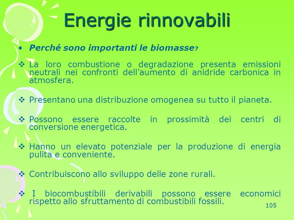 Energie rinnovabili Perché sono importanti le biomasse
