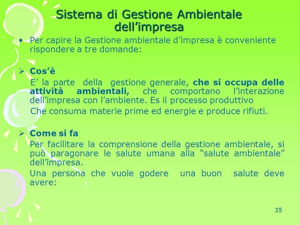 Sistema di Gestione Ambientale dell'impresa