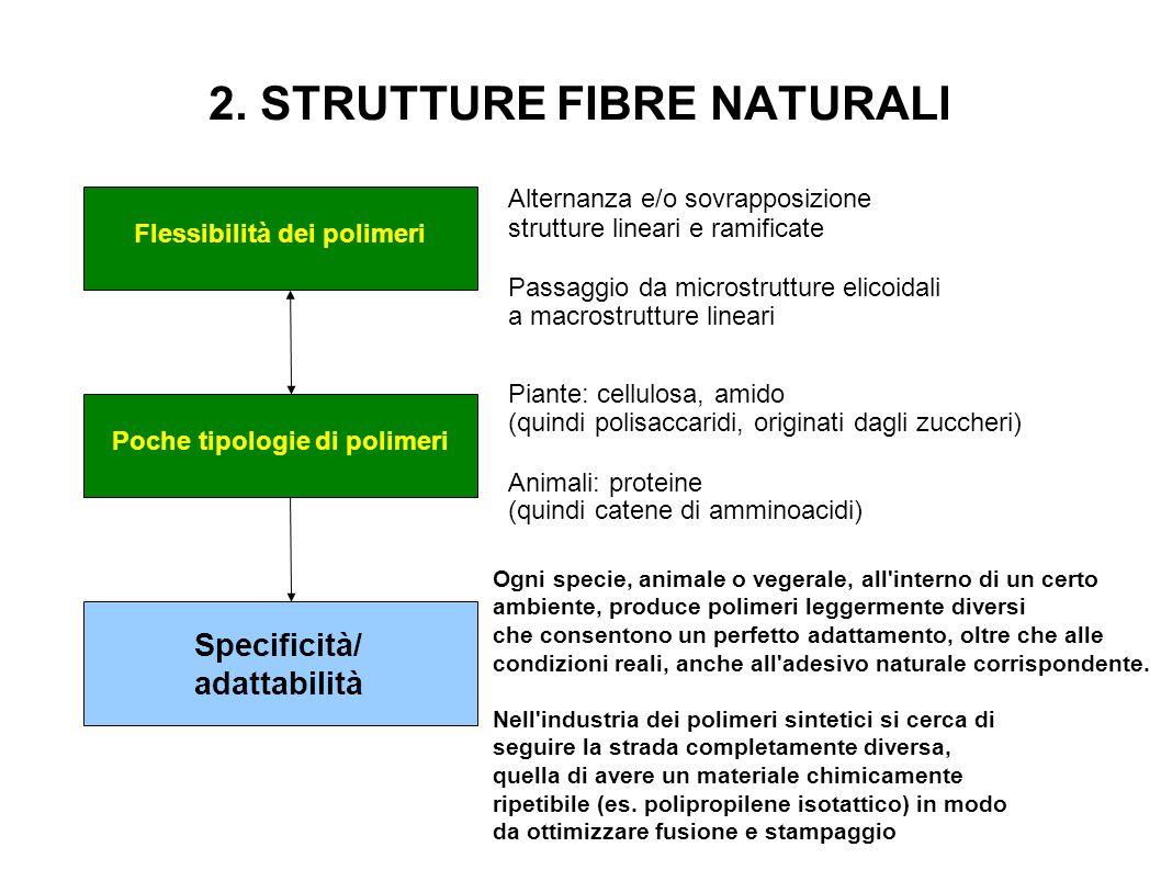 2. STRUTTURE FIBRE NATURALI