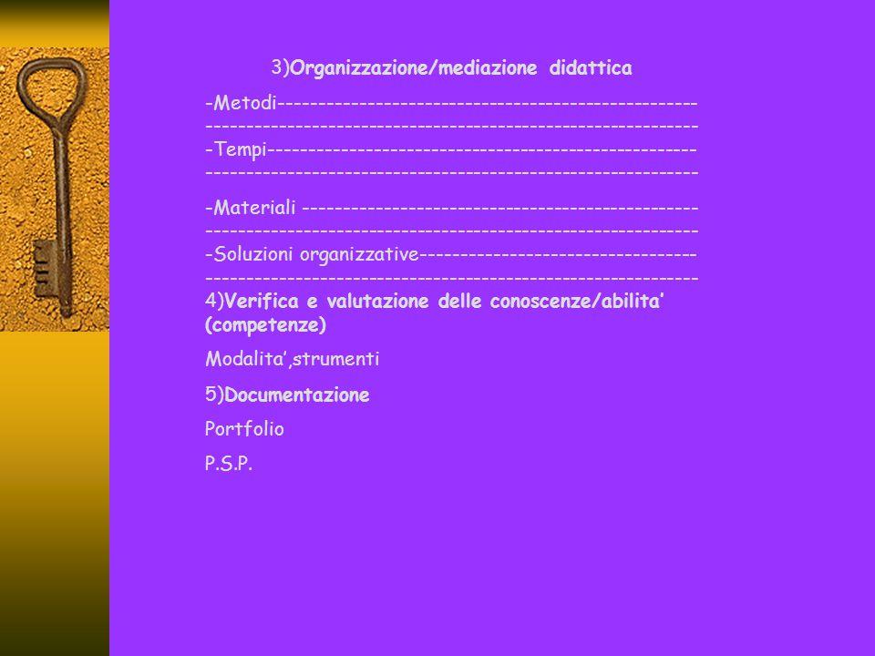 3)Organizzazione/mediazione didattica