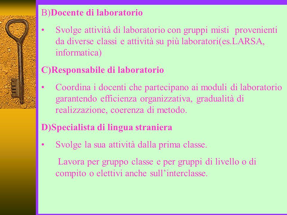 B)Docente di laboratorio