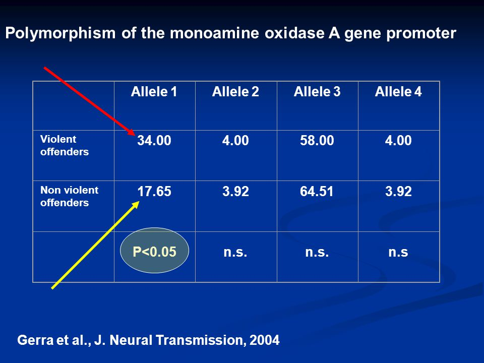 Polymorphism of the monoamine oxidase A gene promoter
