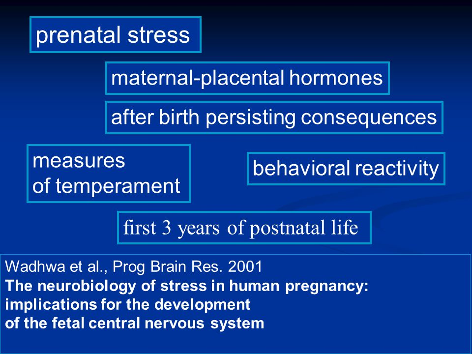 prenatal stress maternal-placental hormones