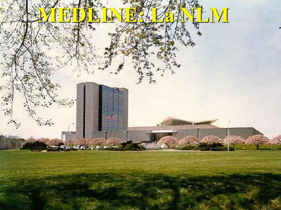 MEDLINE: La NLM