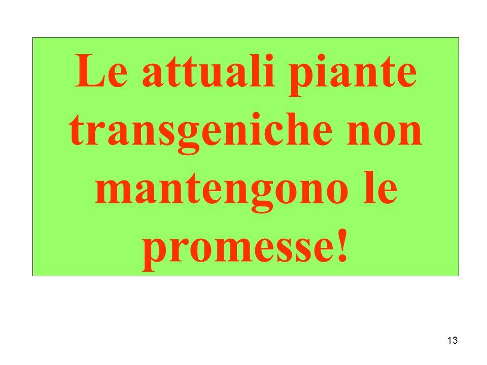 Le attuali piante transgeniche non mantengono le promesse!