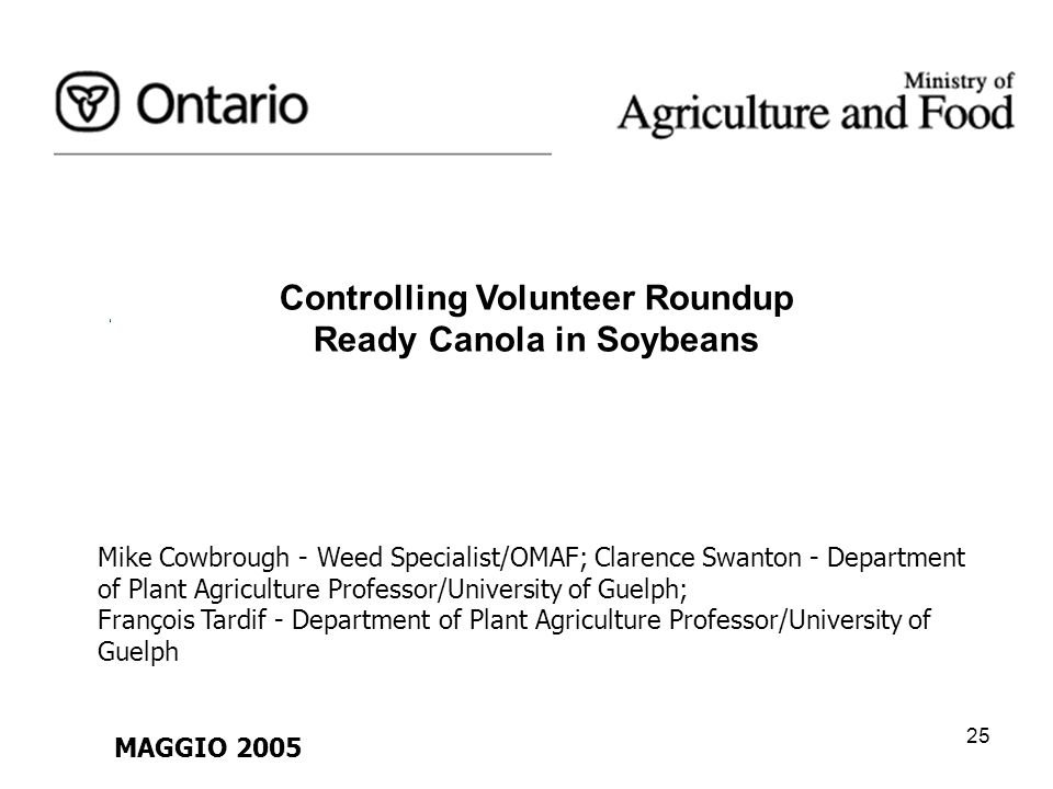 Controlling Volunteer Roundup Ready Canola in Soybeans