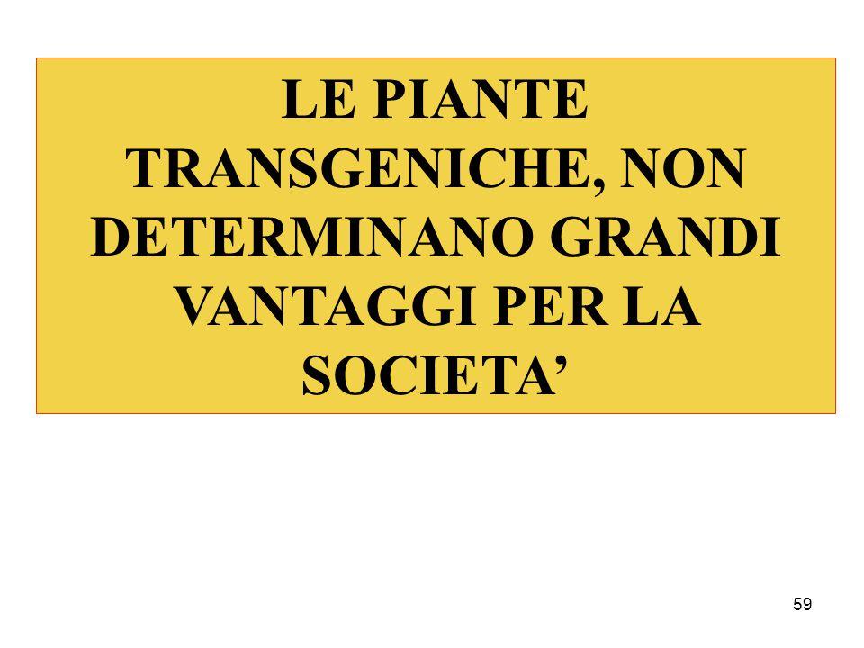 LE PIANTE TRANSGENICHE, NON DETERMINANO GRANDI VANTAGGI PER LA SOCIETA'
