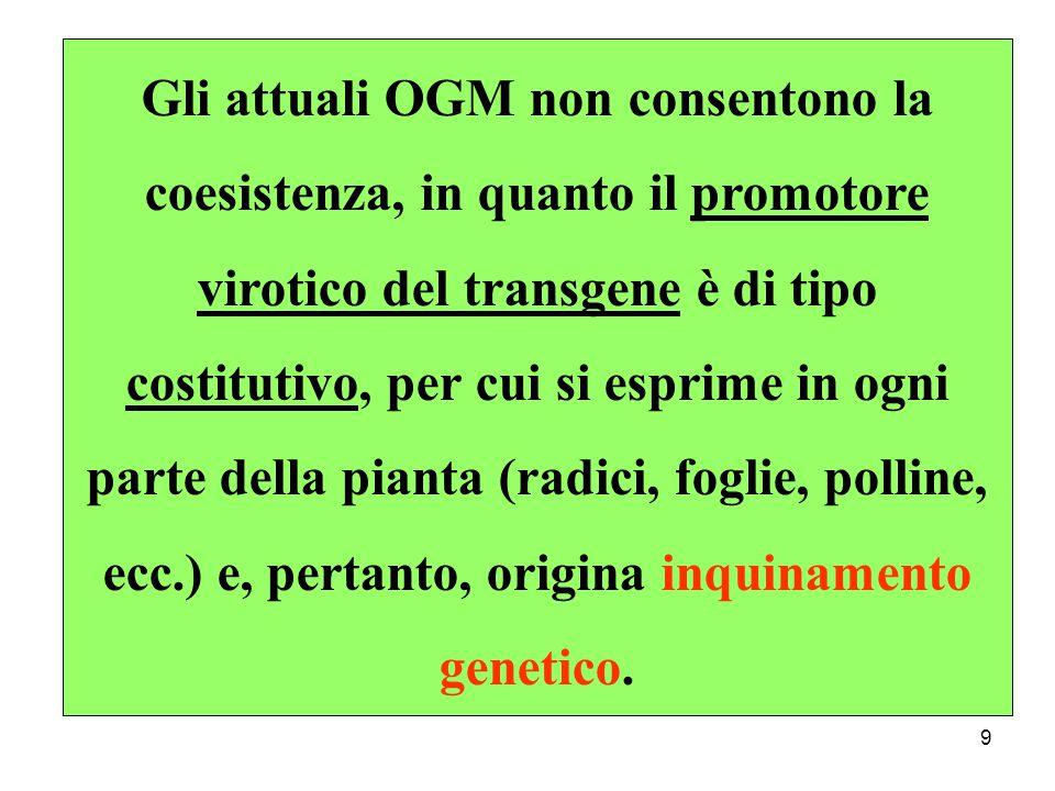 Gli attuali OGM non consentono la coesistenza, in quanto il promotore virotico del transgene è di tipo costitutivo, per cui si esprime in ogni parte della pianta (radici, foglie, polline, ecc.) e, pertanto, origina inquinamento genetico.