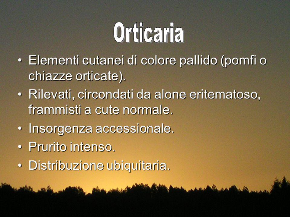 Orticaria Elementi cutanei di colore pallido (pomfi o chiazze orticate). Rilevati, circondati da alone eritematoso, frammisti a cute normale.