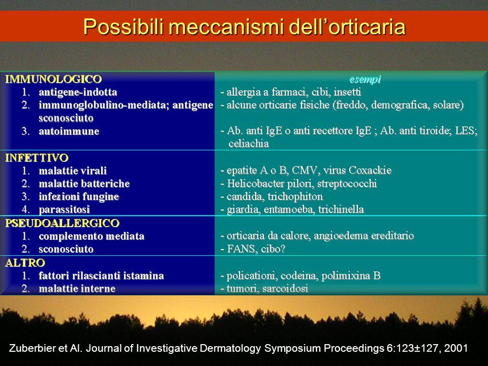 Possibili meccanismi dell'orticaria