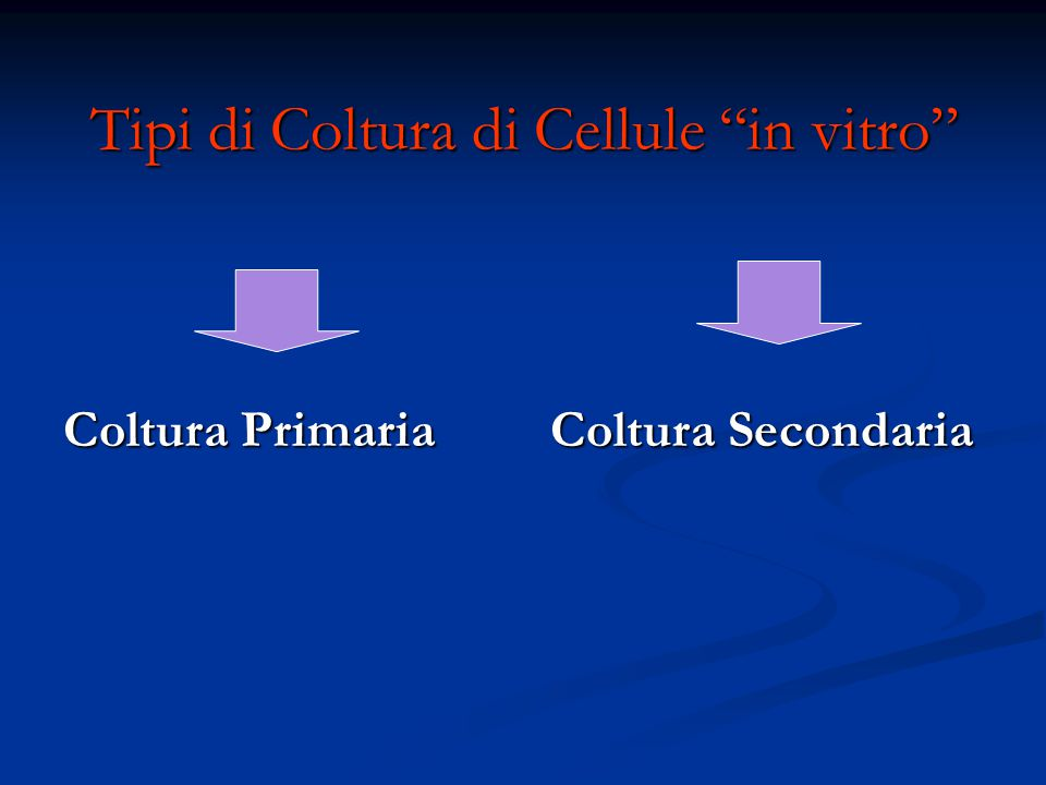 Tipi di Coltura di Cellule in vitro