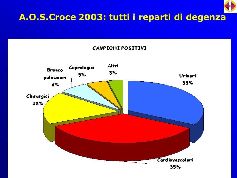 A.O.S.Croce 2003: tutti i reparti di degenza