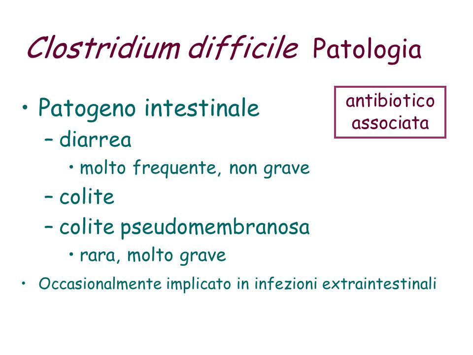 Clostridium difficile Patologia