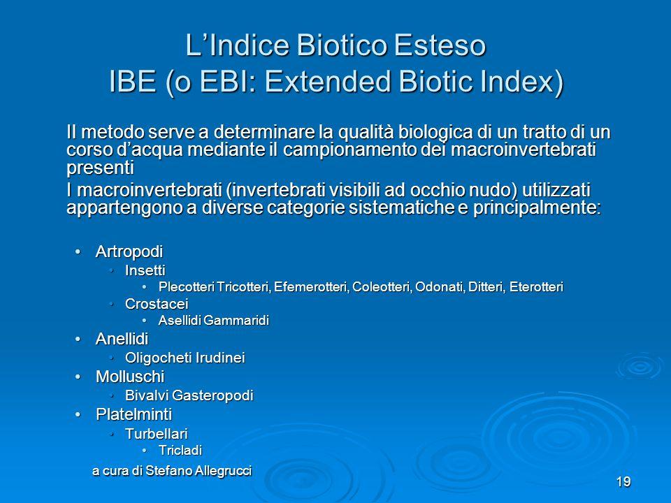 L'Indice Biotico Esteso IBE (o EBI: Extended Biotic Index)