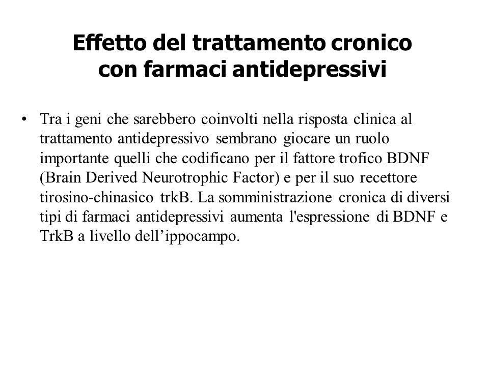 Effetto del trattamento cronico con farmaci antidepressivi