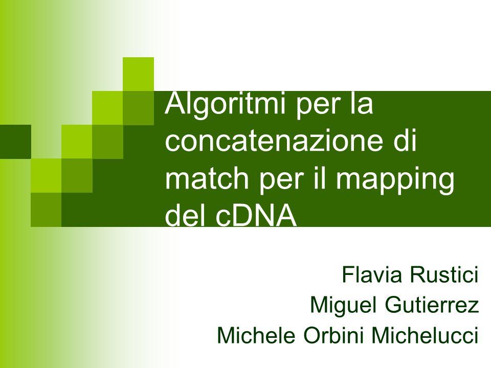 Algoritmi per la concatenazione di match per il mapping del cDNA