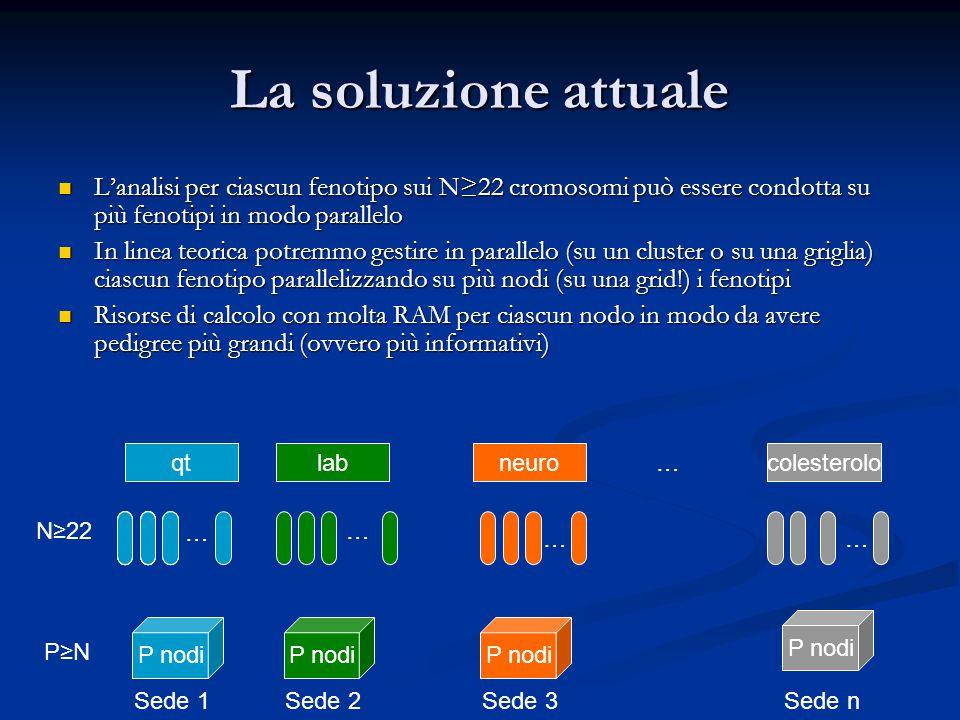 La soluzione attuale L'analisi per ciascun fenotipo sui N≥22 cromosomi può essere condotta su più fenotipi in modo parallelo.