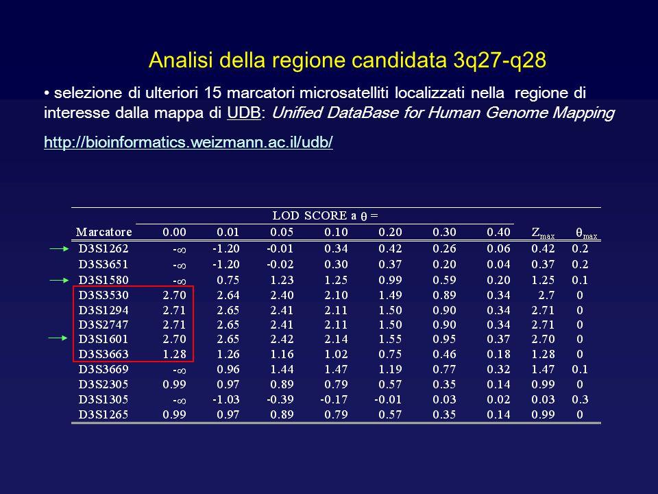 Analisi della regione candidata 3q27-q28