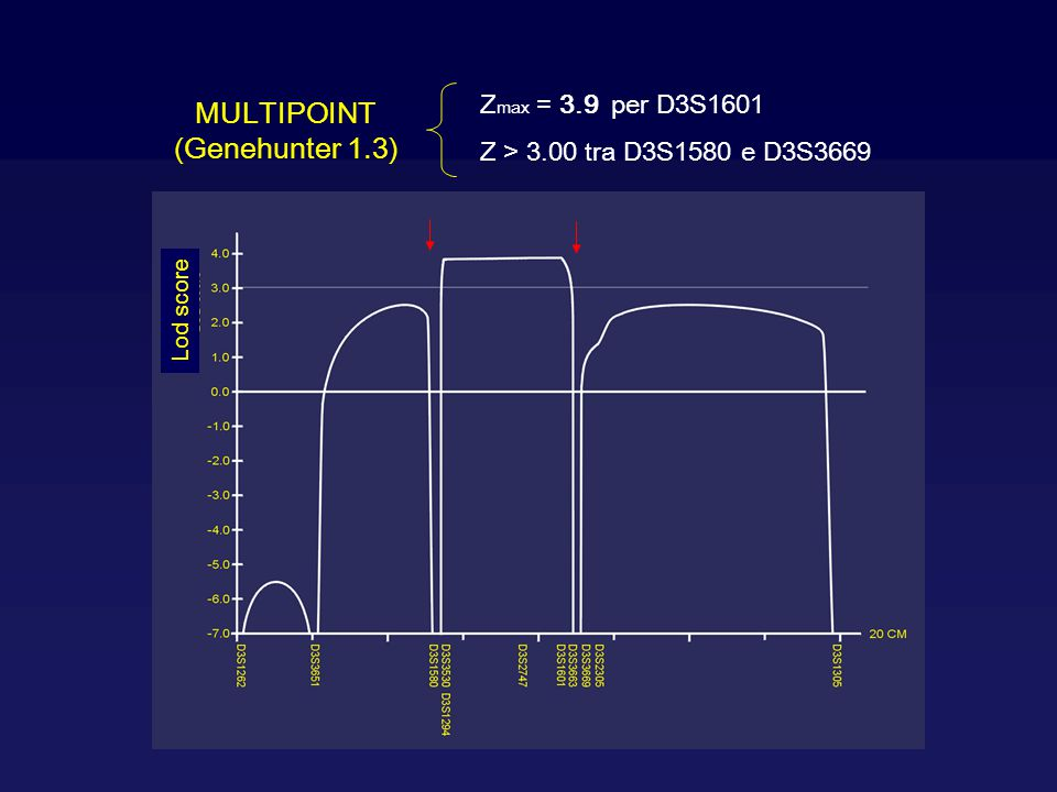 MULTIPOINT (Genehunter 1.3) Zmax = 3.9 per D3S1601