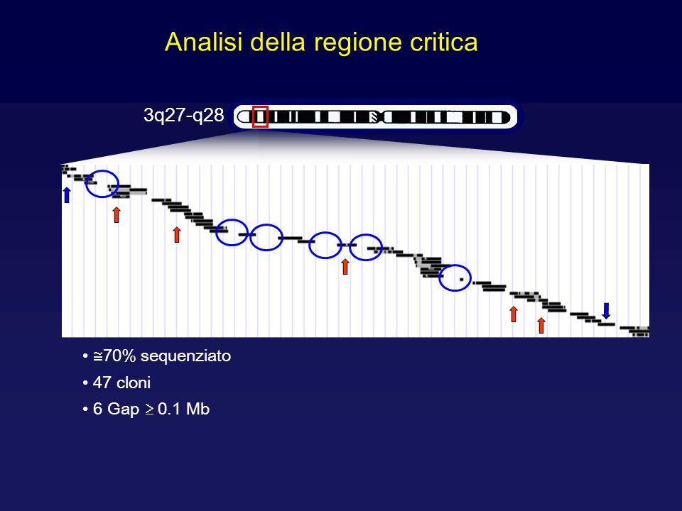 Analisi della regione critica