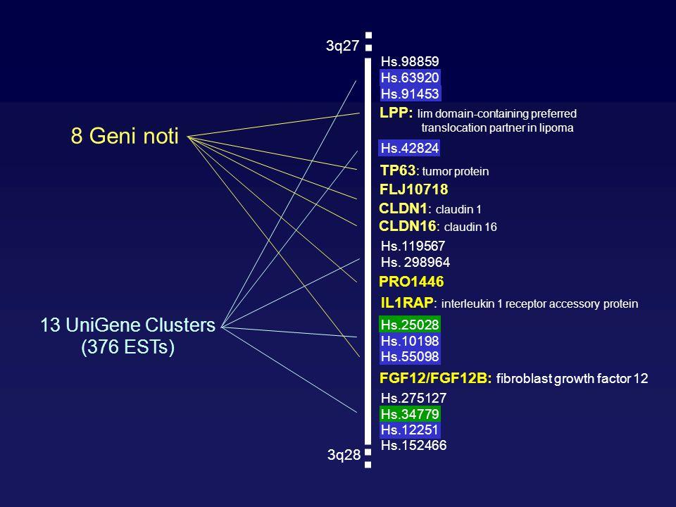 8 Geni noti 13 UniGene Clusters (376 ESTs) 3q27