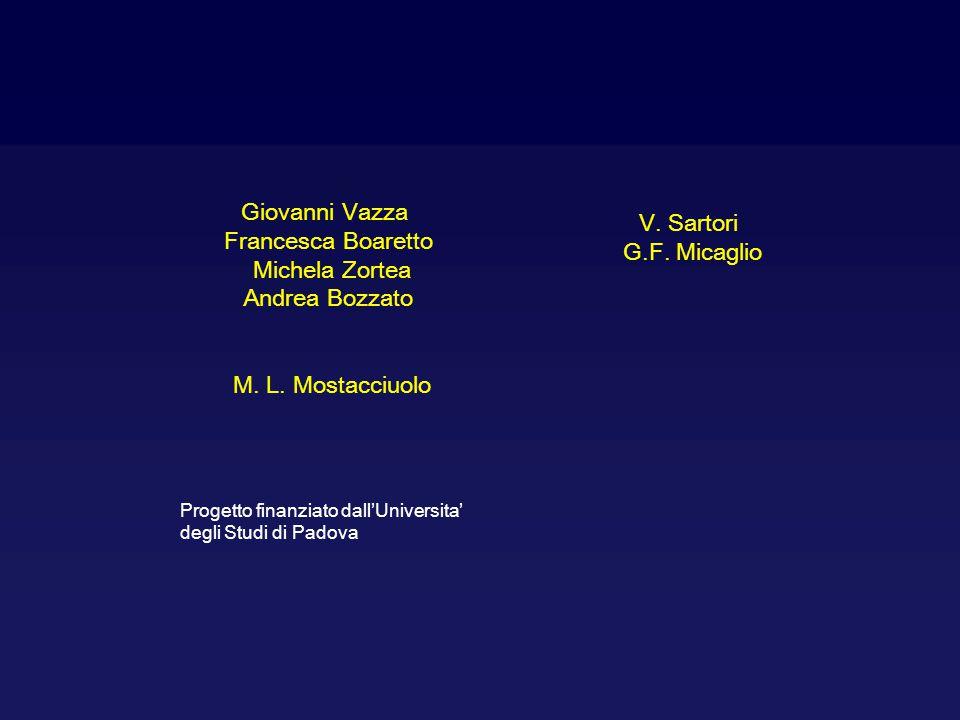 Giovanni Vazza V. Sartori Francesca Boaretto G.F. Micaglio
