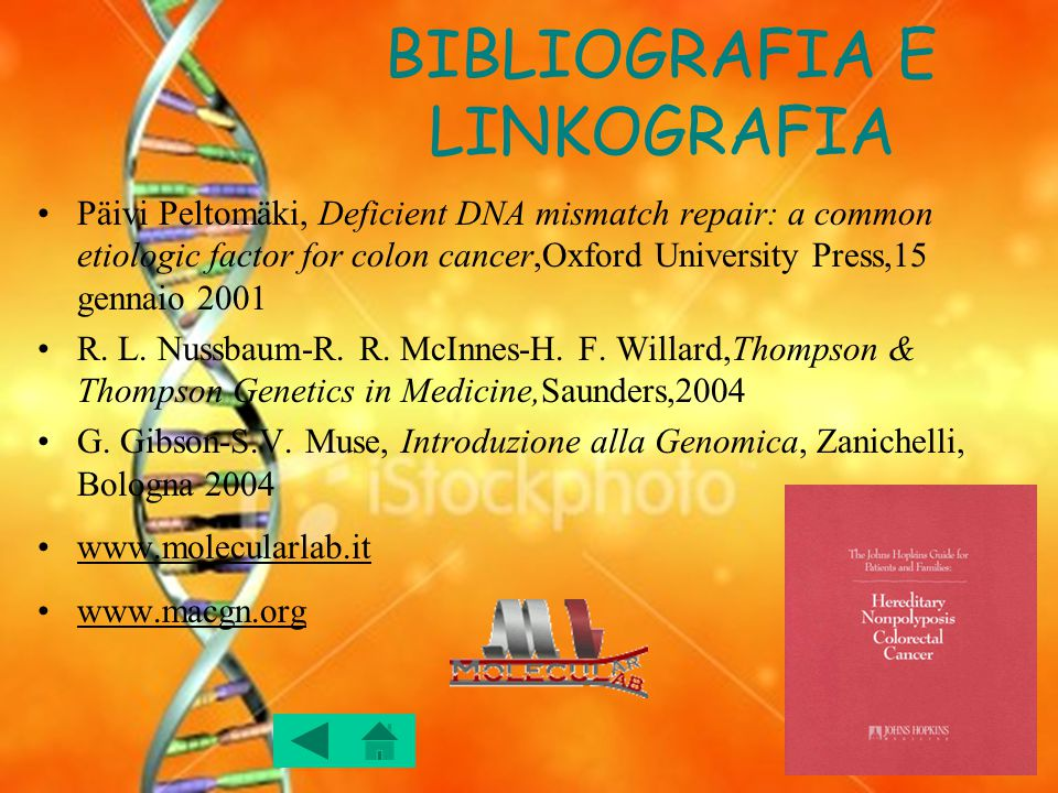 BIBLIOGRAFIA E LINKOGRAFIA