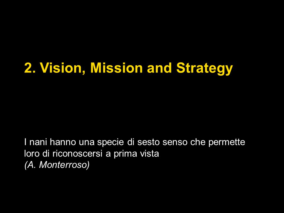 2. Vision, Mission and Strategy