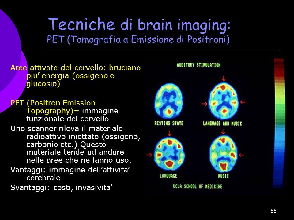 Tecniche di brain imaging: PET (Tomografia a Emissione di Positroni)