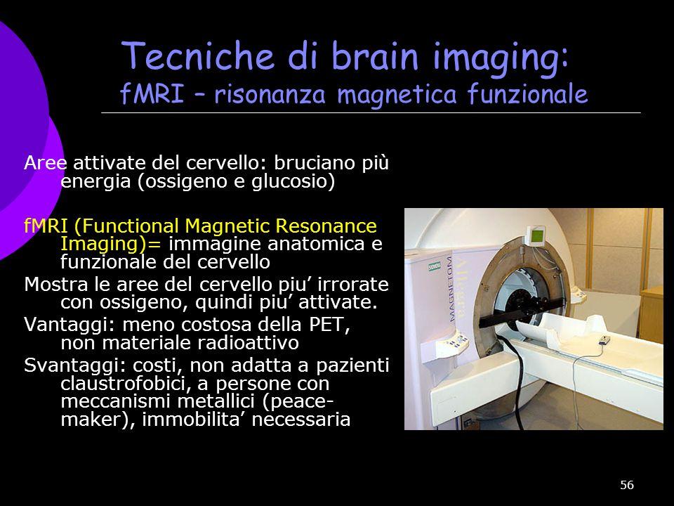 Tecniche di brain imaging: fMRI – risonanza magnetica funzionale