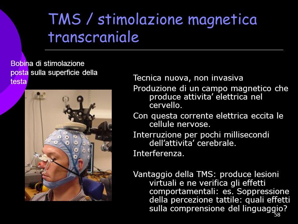 TMS / stimolazione magnetica transcraniale