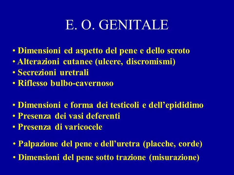 E. O. GENITALE Dimensioni ed aspetto del pene e dello scroto