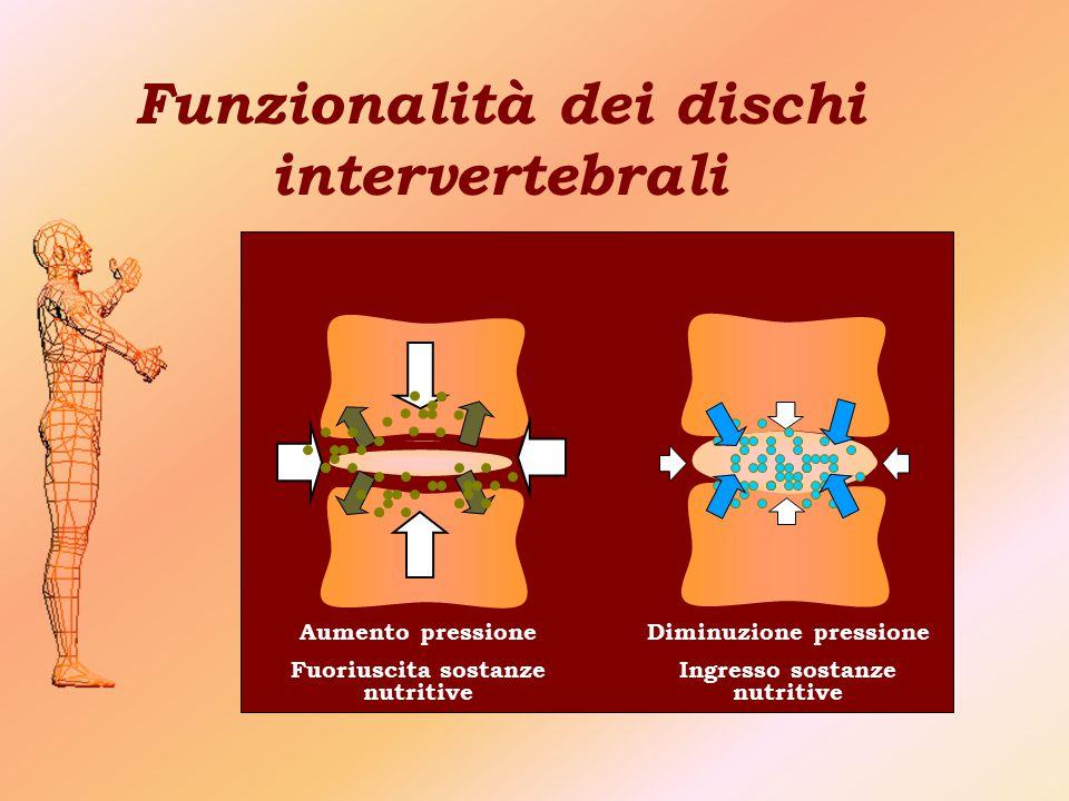 Funzionalità dei dischi intervertebrali