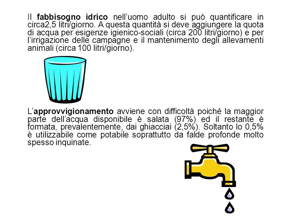 Il fabbisogno idrico nell'uomo adulto si può quantificare in circa2,5 litri/giorno. A questa quantità si deve aggiungere la quota di acqua per esigenze igienico-sociali (circa 200 litri/giorno) e per l'irrigazione delle campagne e il mantenimento degli allevamenti animali (circa 100 litri/giorno).