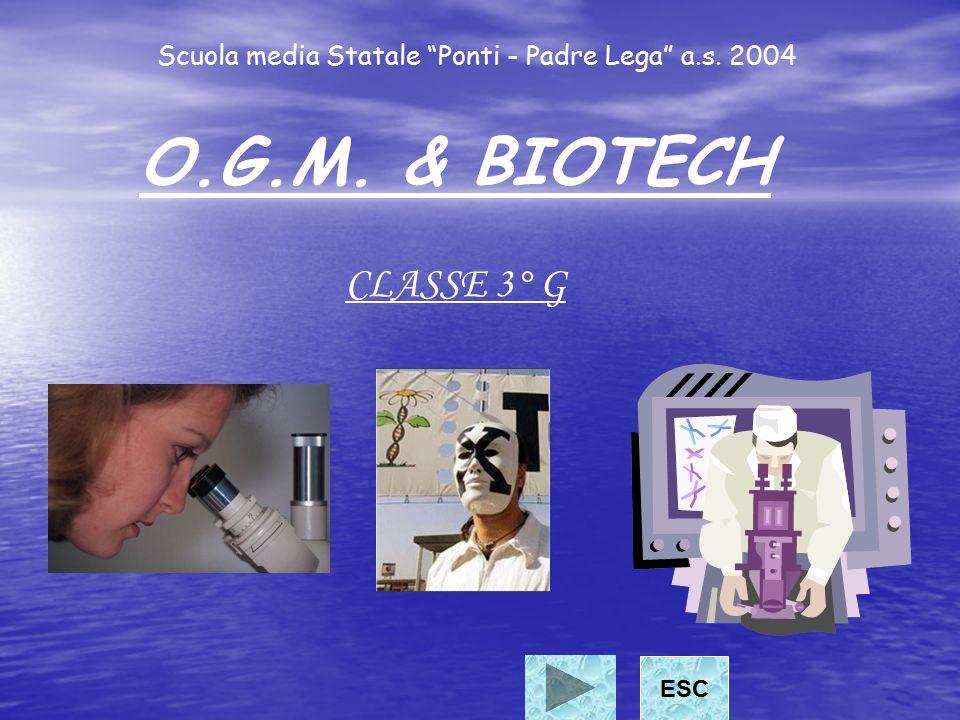 Scuola media Statale Ponti - Padre Lega a.s. 2004