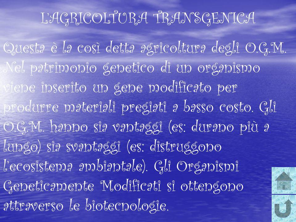 L'AGRICOLTURA TRANSGENICA